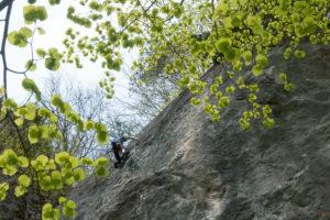 Klettertreffen mit Moni in Kufsteiner Klettergarten in Morsbach